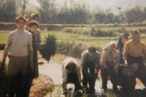 Mr Sadeghi Iveli, far left, spent his childhood working on the family farm in Ivel with his family.(Supplied: Arsalan Sadeghi Iveli)